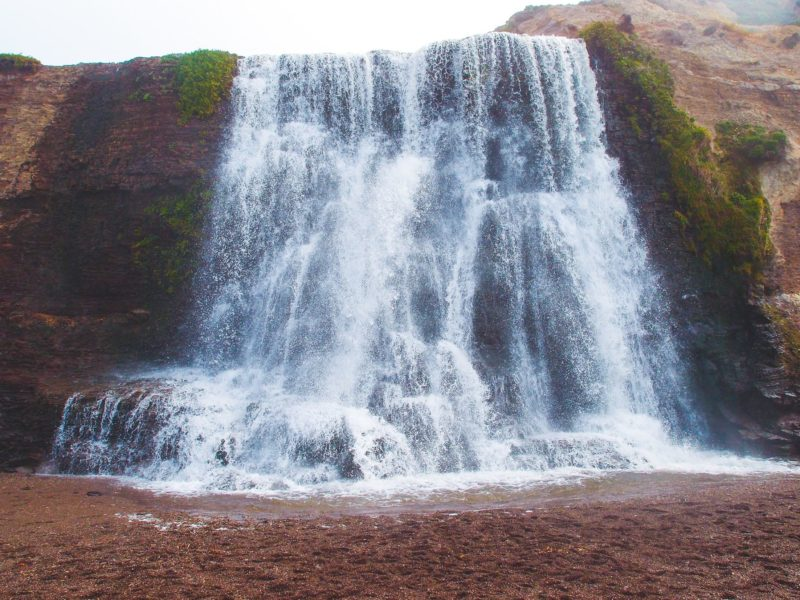 Hike to Alamere Falls in Point Reyes