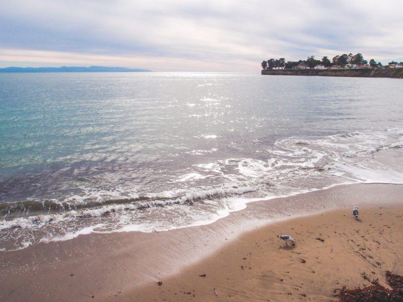 Trip To Santa Cruz